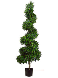5.5' Spiral Boxwood Topiary in Plastic Pot Two Tone Green (pack of 1)