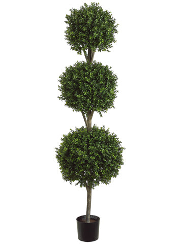 6' Triple Ball-Shaped Boxwood Topiary in Plastic Pot Two Tone Green (pack of 1)
