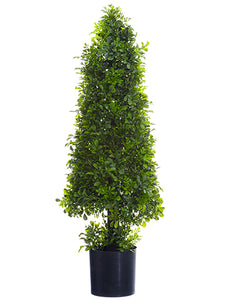 "29"" Boxwood Cone Topiary in Nursery Pot Green (pack of 1)"