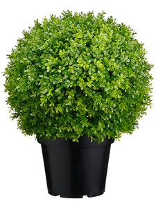 "17"" Plastic Baby's Tear Ball Topiary in Pot Two Tone Green (pack of 2)"
