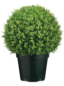"28"" Plastic Baby's Tear Ball Topiary in Pot Two Tone Green (pack of 1)"
