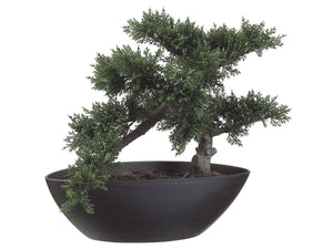 "14"" Cedar Bonsai with 197 Leaves in Plastic Pot Green (pack of 4)"