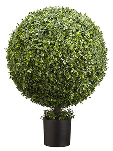 "36"" Boxwood Ball Topiary in Nursery Pot Green (pack of 1)"