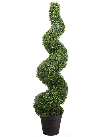 5' Boxwood Spiral Topiary in Pot Green (pack of 1)
