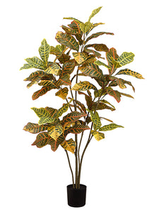 "48"" Croton Plant in Pot  Yellow Green (pack of 2)"
