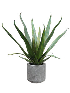 "19"" Agave in Cement Pot  Green (pack of 4)"