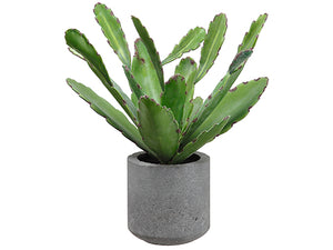 "15"" Cactus in Cement Pot  Green (pack of 4)"