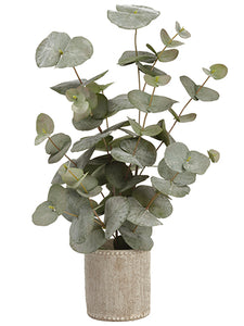 "20.5"" Ecualyptus Plant in Cement Container Green Gray (pack of 1)"