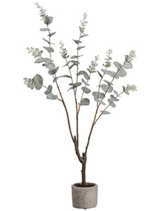 "35"" Eucalyptus Plant in Cement Pot Green Gray (pack of 2)"
