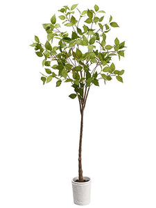 "38"" Laurel Tree in Terra Cotta Pot Green (pack of 4)"