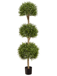 "63.75"" Ball Shaped Lavender Leaf Triple Topiary in Pot Green (pack of 1)"