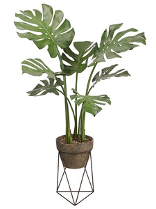 "43"" Monstera Leaf Plant in Terra Cotta Pot With Stand Green (pack of 2)"