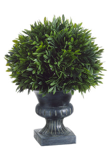 "9""Hx6.5""D Podocarpus with 57 Leaves in Plastic Urn Green (pack of 6)"