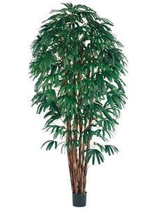 8' Rhapis Tree x7 with 1400 Leaves in Pot Two Tone Green (pack of 2)