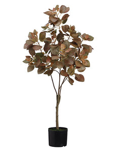 "44"" Smoke Tree in Pot  Two Tone Green (pack of 4)"