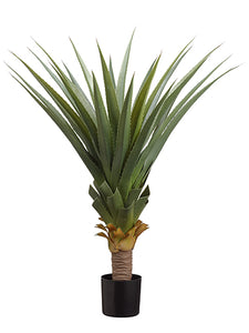 "36"" Spiky Agave Plant x30 in Pot Green Gray (pack of 2)"