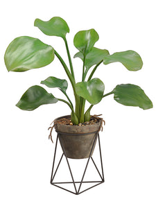 "26"" Water Hyacinth Leaf Plant in Terra Cotta Pot With Stand Green (pack of 2)"