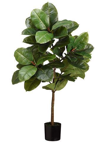 3' Rubber Plant Tree in Pot  Green (pack of 4)