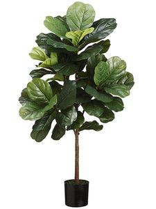 3' Fiddle Leaf Tree in Pot  Green (pack of 4)