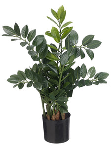 "26.75"" Zamioculcas Plant in Pot Green (pack of 2)"