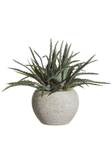 "11"" Soft PE Aloe in Terra Cotta Pot Green Gray (pack of 2)"