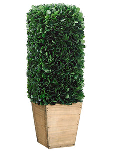 "18"" Dried Look Boxwood Topiary in Paper Mache Pot Green (pack of 2)"