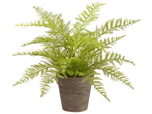 "12"" Soft Fern in Paper Mache Pot Green (pack of 4)"