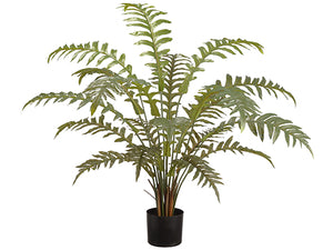 "36"" Fern in Plastic Pot  Green (pack of 4)"
