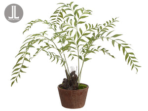 "34"" Fern Plant in Clay Pot  Green (pack of 1)"