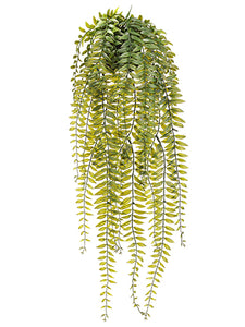 "25"" Hanging Fern in Plastic Pot Green (pack of 6)"