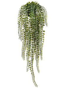 "24"" Hanging Button Leaf Fern in Plastic Pot Green (pack of 6)"