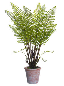 "35"" Forest Fern Plant in Paper Mache Pot Green (pack of 2)"