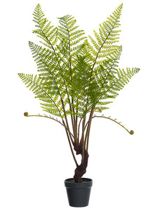"28"" Forest Fern Plant in Plastic Pot Green (pack of 4)"