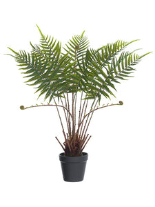 "27.5"" Fern Plant in Plastic Pot Green (pack of 4)"