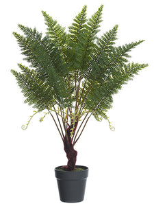 "30"" Double Fern Plant in Plastic Pot Green (pack of 4)"