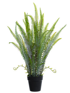 "30"" Sword Fern Plant in Plastic Pot Green (pack of 4)"