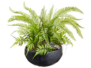 "20""Hx24""D Fern Arrangement in Cement Pot Green (pack of 1)"