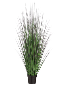 "48"" Grass Bush in Pot  Green Mauve (pack of 4)"