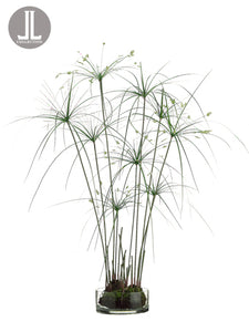 "38"" Papyrus Grass in Glass Vase Green (pack of 1)"