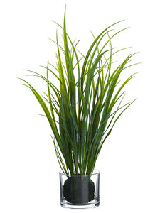 "28"" Grass in Glass Vase  Green (pack of 4)"