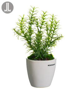 "11"" Rosemary in Ceramic Vase  Green (pack of 6)"