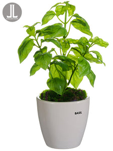 "11"" Basil in Ceramic Vase  Green (pack of 6)"