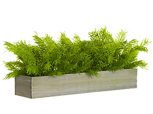 "9""H X 7""W X 24""L Soft PE Juniper in Wood Planter Green (pack of 2)"