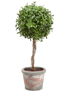 "18"" Tea Leaf Ball Topiary in Terra Cotta Green (pack of 2)"