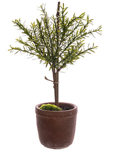 "18"" Myrtle Ball Topiary in Cement Pot Green (pack of 4)"