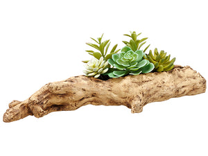 "6.5"" Succulent Garden in Faux Wood Log Green (pack of 2)"