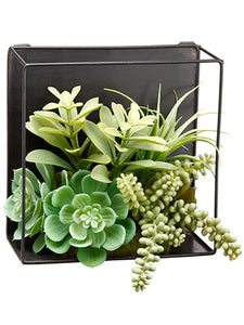 "8"" Succulent Garden Hanging Wall Decor Green (pack of 6)"