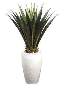 "45"" Agave in Ceramic Pot  Green (pack of 1)"