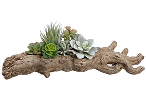 "6.5"" Succulent Garden in Faux Wood Planter Green (pack of 2)"