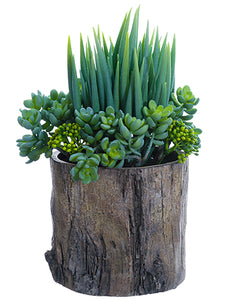 "14"" Succulent Garden in Cement Pot Green (pack of 2)"